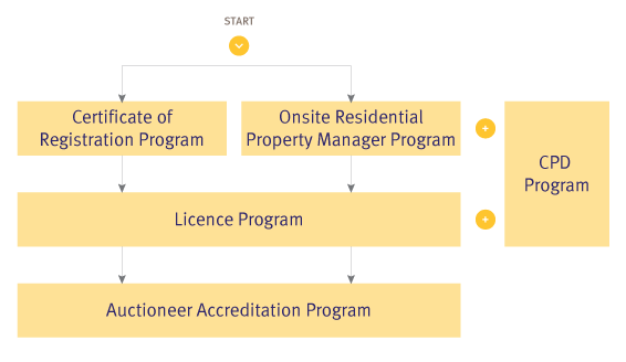 000856_real-estate-progression-diagrams_nsw