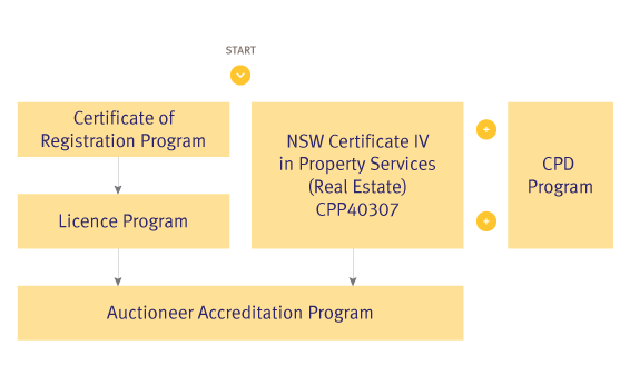 NSW Real Estate agent study pathway