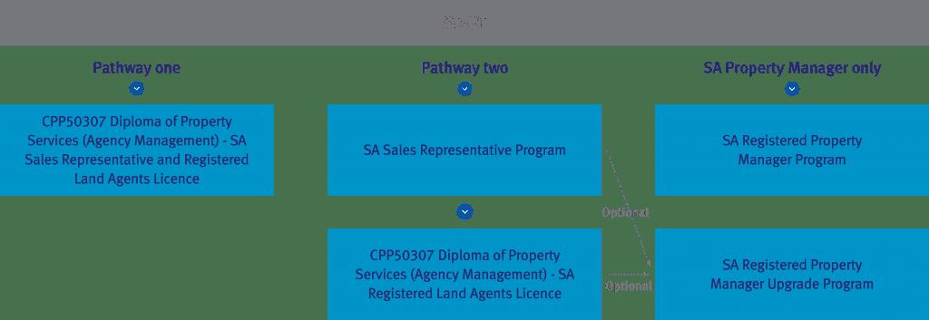 SA Real Estate Study Pathway Diagrams